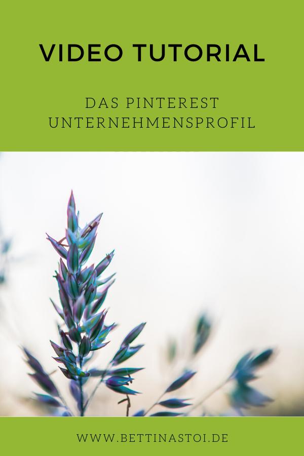 Pinterest Videotutorial Unternehmensprofil Grafik